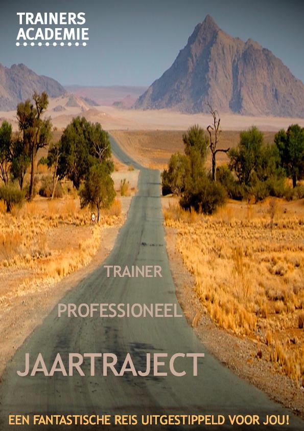 leertraject professioneel trainer